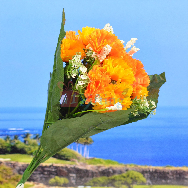 Big Leaf Orange Decorative Flower Plant