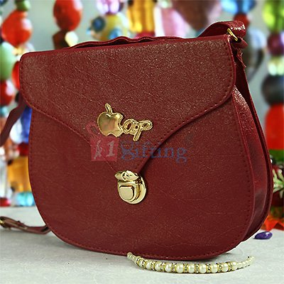 Fancy and Stylish Hanging Bag for Girls